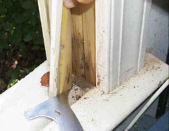atlanta leaky windows